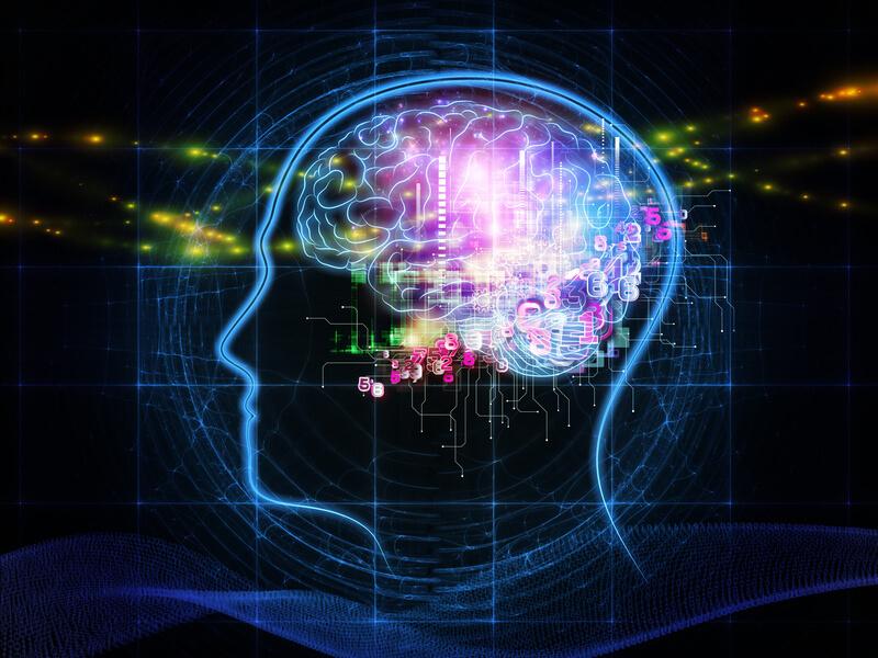 【徹底比較】右脳派 VS 左脳派 あなたはどっち?鍛え方や適職を検証!