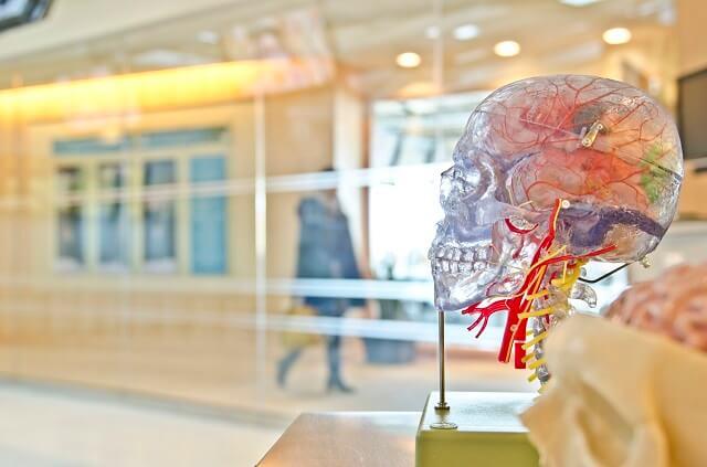 脳疲労のメカニズム